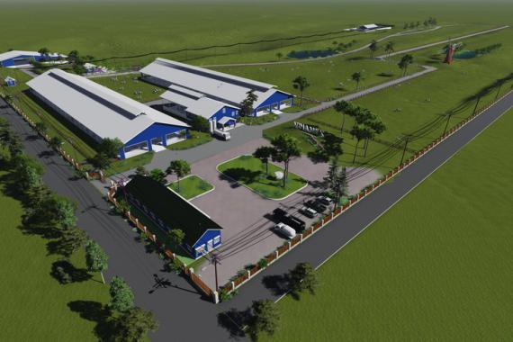 林同牛奶農場2-有機農場